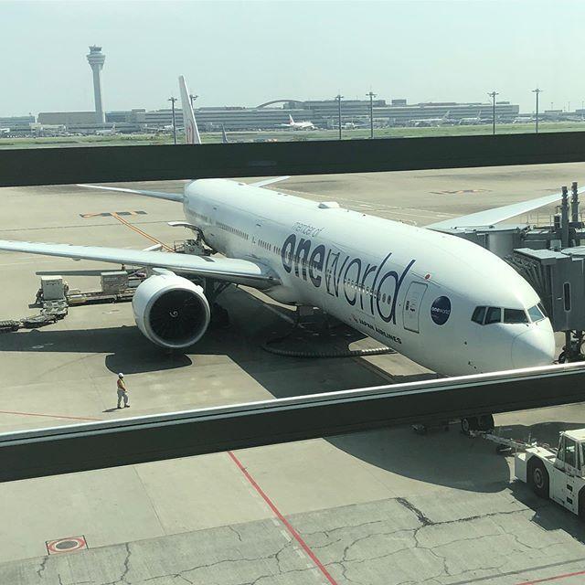 JAL 羽田発ニューヨーク行