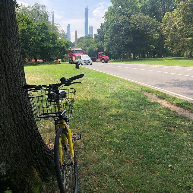 ニューヨーク・セントラルパークサイクリング