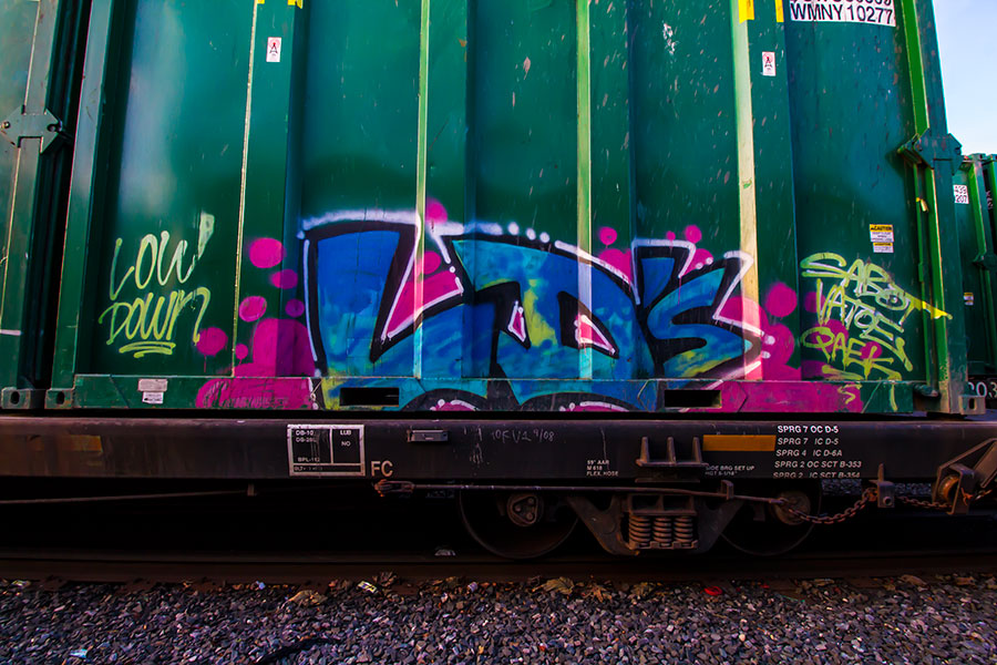 IMG_3755