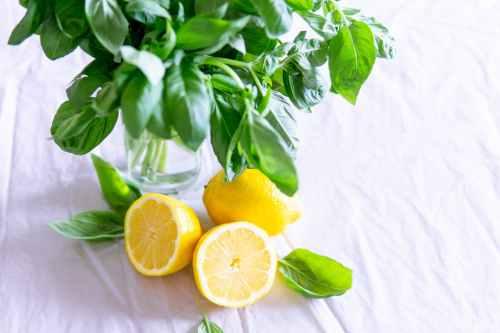 sliced lemon and basil leaves on glass