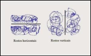rostos1 300x184 - CORTES PARA OS FIOS DE ACORDO COM O TIPO E O FORMATO DO ROSTO