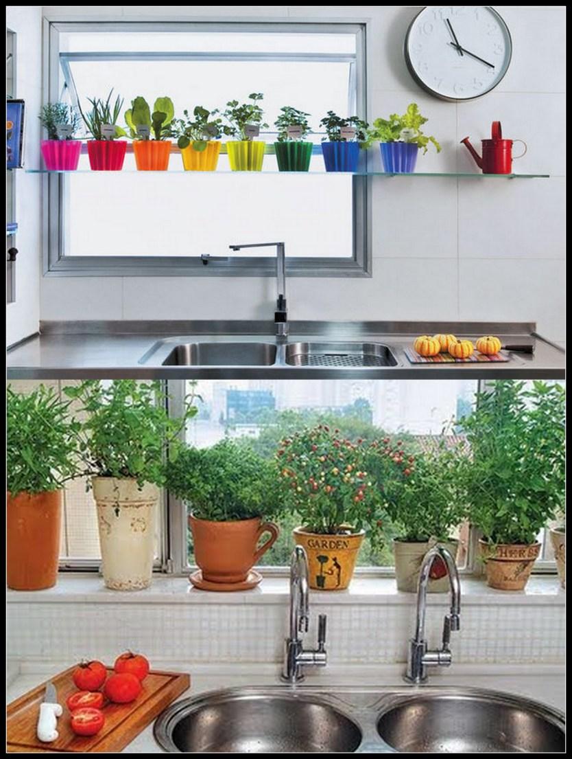 jardim na cozinha - FAÇA SEU JARDIM EM QUALQUER CANTO