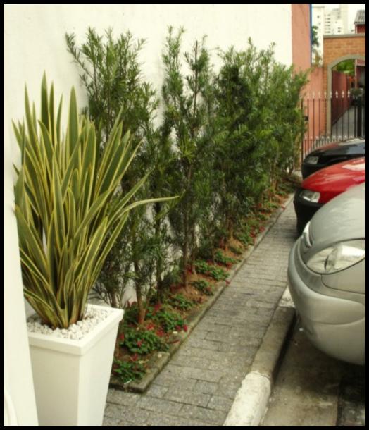 jardim na frente 1 - FAÇA SEU JARDIM EM QUALQUER CANTO