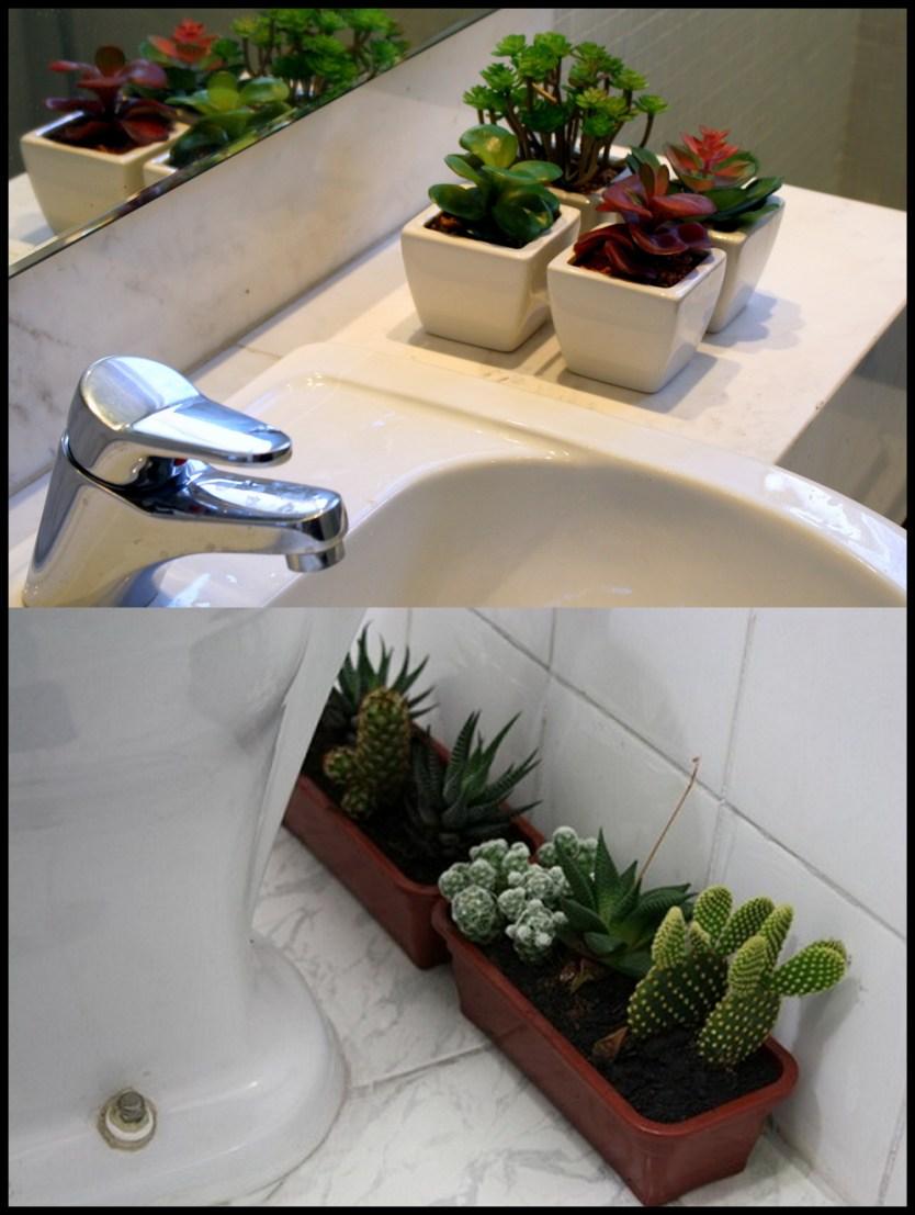 jardim no banheiro - FAÇA SEU JARDIM EM QUALQUER CANTO