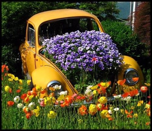 jardim-no-carro