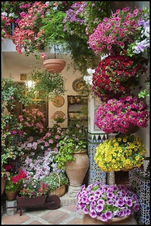 jardim no interior florido - FAÇA SEU JARDIM EM QUALQUER CANTO
