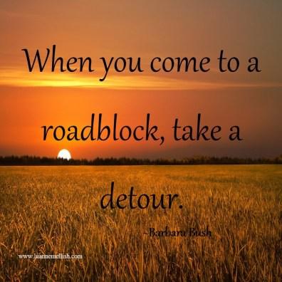 take_detour