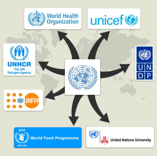 Liên Hiệp Quốc và một số cơ quan chuyên trách. Ảnh: payourintern.com.