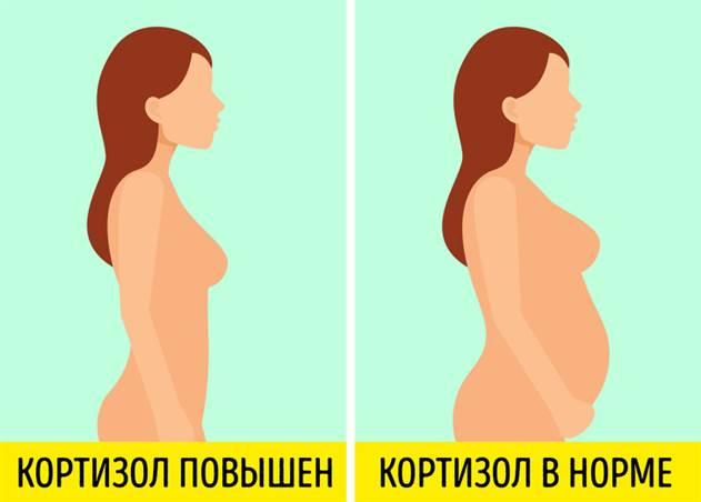 Разбираемся, как на самом деле - 7 распространенных мифов о гормонах