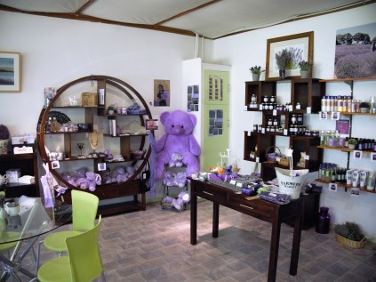 lavender products inside shop