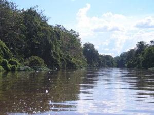 640px-Scenery_around_Kapuas_River