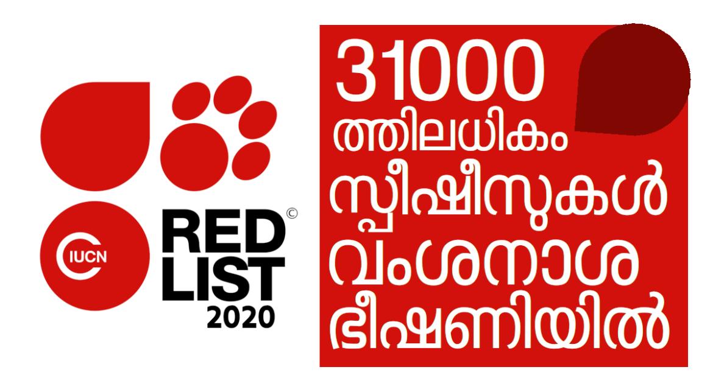 31000-ത്തിലധികം സ്പീഷീസുകള് വംശനാശഭീഷണിയില്