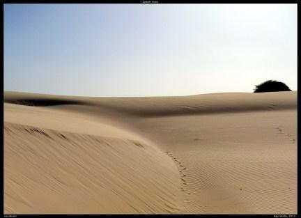 Viana Desert by Gundozer Panoramio