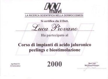 mavi-2000