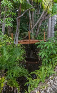 Lucas-Lagoons-Insane-Pools-Jungle-8147