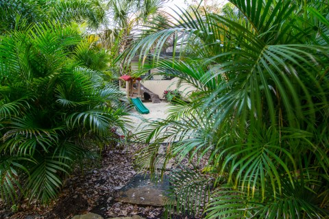 Hidden play area in tropical landscaping