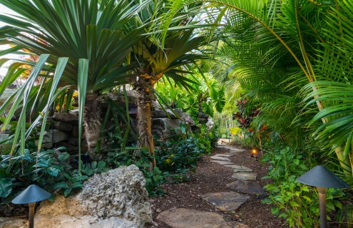 natural-rock-waterfall-pool-siesta-key-tropical-lanscaped-walkway