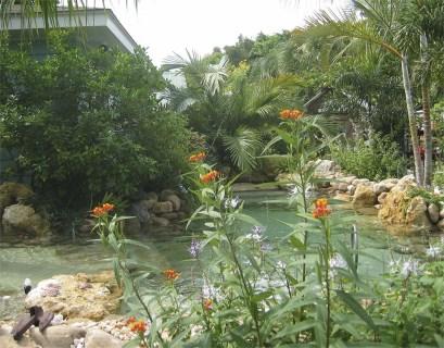 Natural sand bottom lagoon waterfall