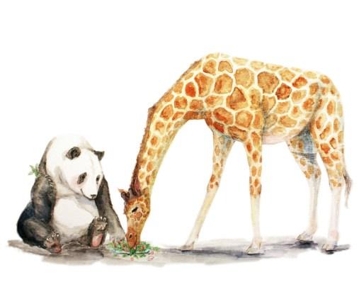 panda giraffe111472