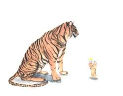 tiger- prairiedog 111472