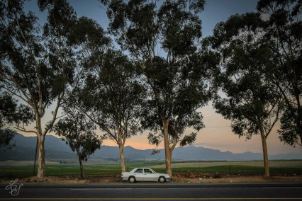 Toward Northern Cape