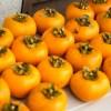 柿酢に白い膜が発生!カビが生えたりゼリー状の物体が出た時の対処法は?