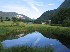 Arboreto-del-Tesino-Pieve-Tesino-Foto-Dott.ssa-Scoppola