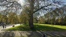Kensington Gardens... otra vez