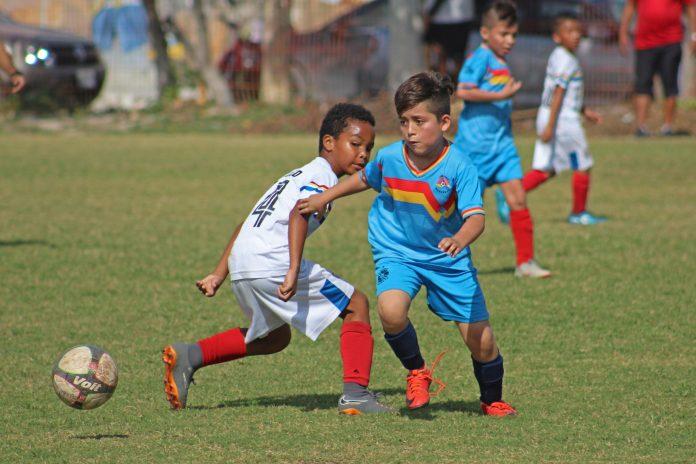 Cancela Pioneros de Cancún torneos infantiles