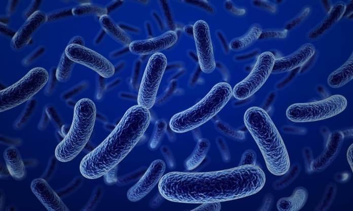 Resistencias bacterianas