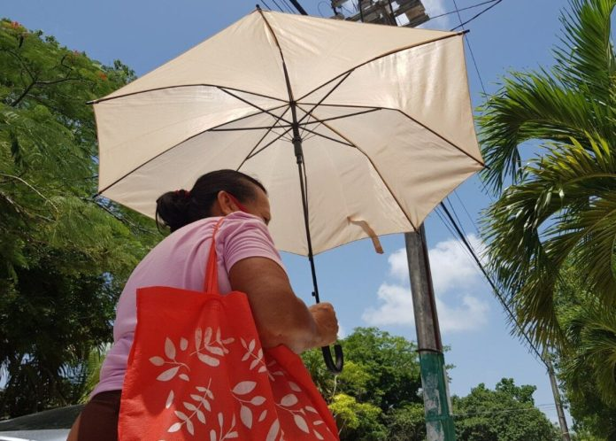 Resiente Quintana Roo los estragos de la canícula