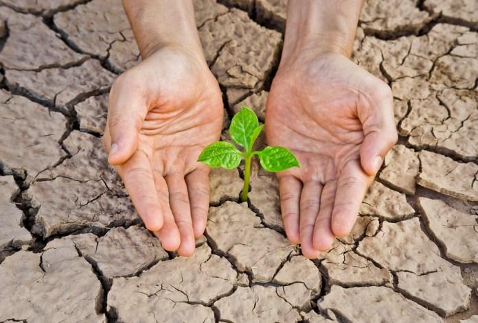 Piden a gobierno cuidar medio ambiente en reactivación económica