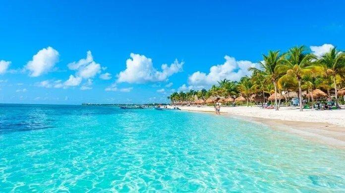 Cancún, advierten desastre ecológico