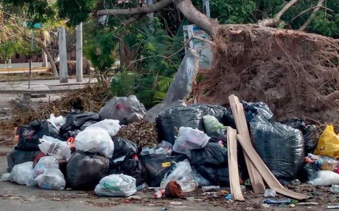 Preparan empresarios su estrategia contra el problema de basura