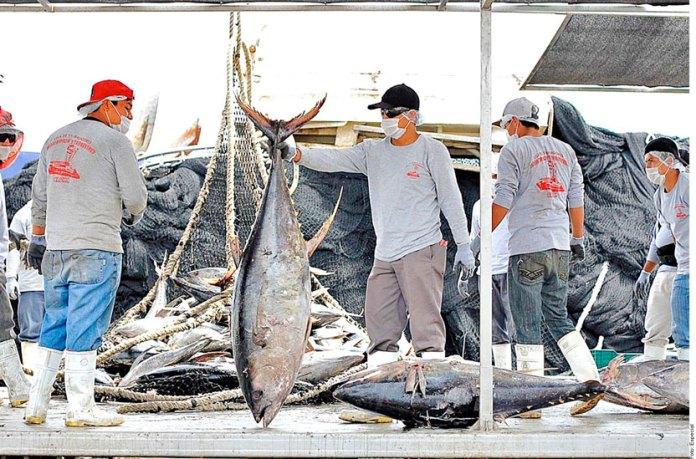 Impulsan certificación sostenible para pesca