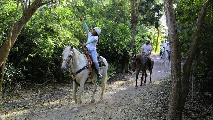 Destaca ecoturismo en el Caribe mexicano