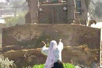 palestina13g.jpg