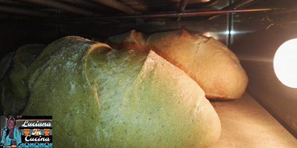 Cuocere per circa 40 minuti o fino ad ottenere una bella doratura in superficie.