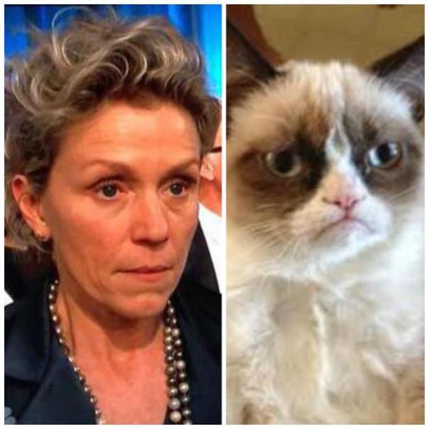 FrancesMcDormand Grumpy Cat