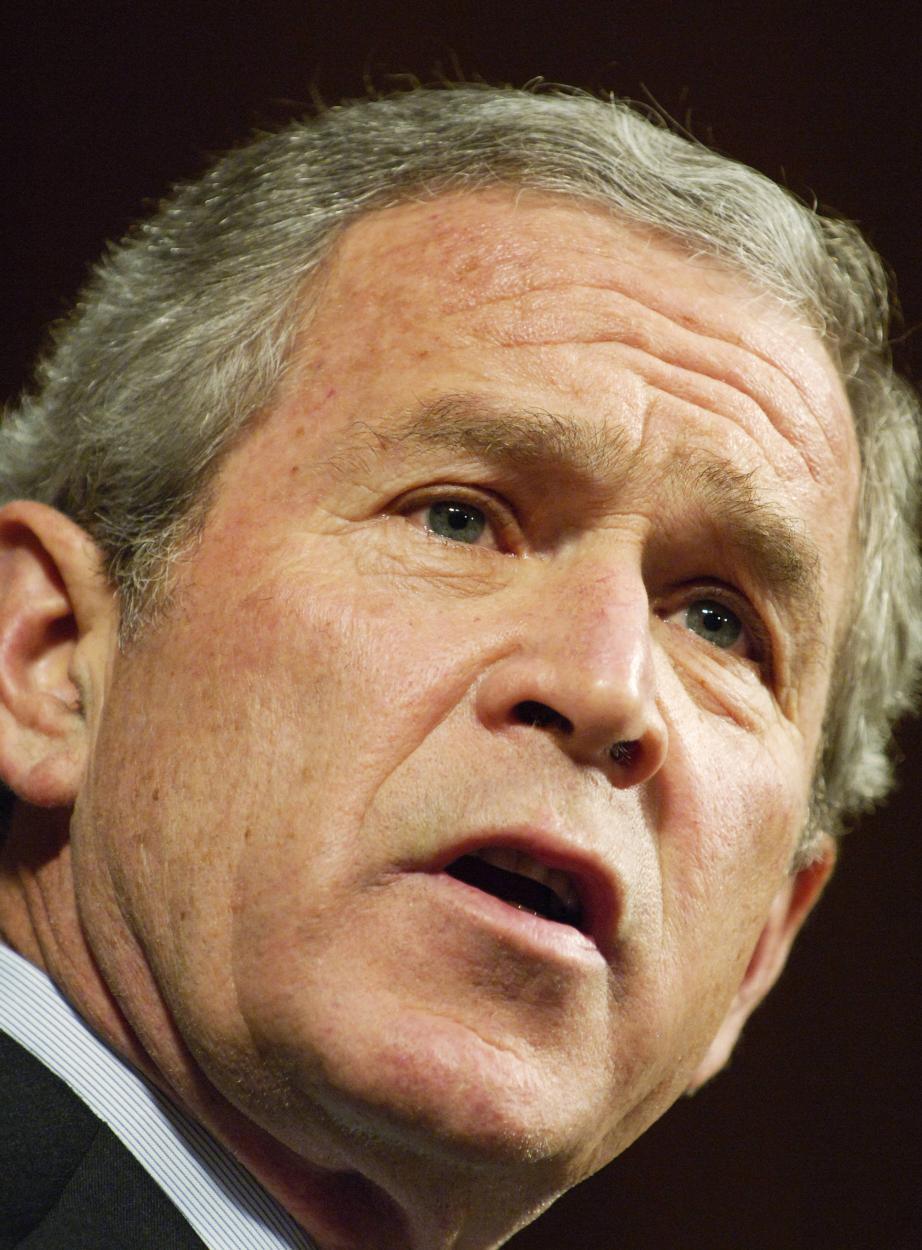 US-IRAQ-POLITICS-BUSH-SPEECH