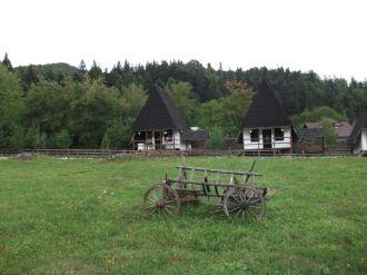 Tabara-Tazlau-septembrie-2015-010