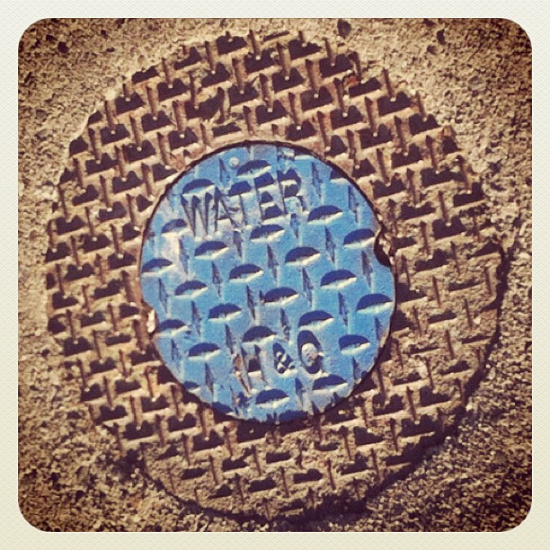 Maple Ridge water system cover, nice assorted colors on the sidewalk