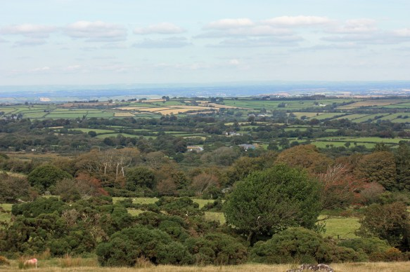North east from Scorhill