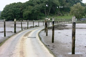 Tidal Road