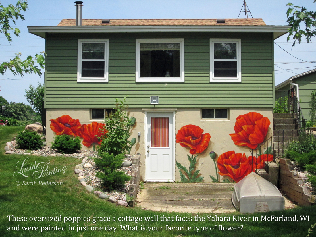 Several large, over sized orange and red poppies fill the wall of a walk out basement on this cottage along the Yahara River. Shadows are added to add dimension and pop them out from the wall.