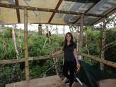 Bello Horizonte Jungle Hostel
