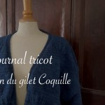 journal tricot gilet coquille - carnet de recherches de Lucie Choupaut