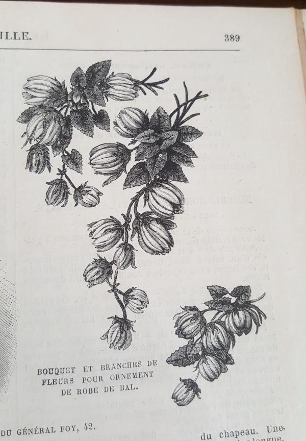ornements de fleurs pour robe de bal La Mode Illustrée 5 décembre 1880