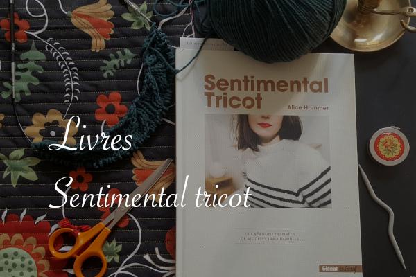 Livre Sentimental tricot d'Alice Hammer - Carnet de recherches de Lucie Choupaut
