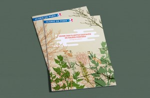Catalogue-plantes-indigenes-01
